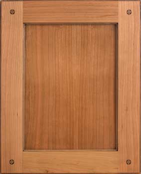 A cabinet door with single furniture pegs.